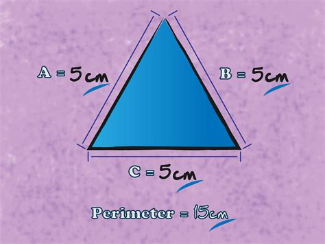 How To Find Pics Of You 3 Ways To Find The Perimeter Of A Triangle Wikihow