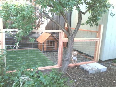 building a dog run in backyard pinot s dog run pinot pinterest dog yards and backyard