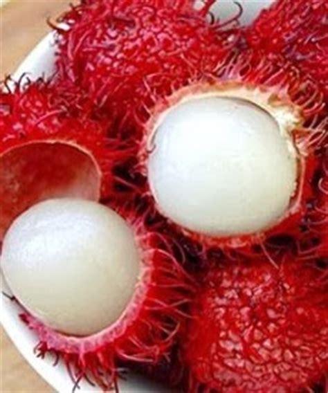 resep spesial manisan buah rambutan resep manisan