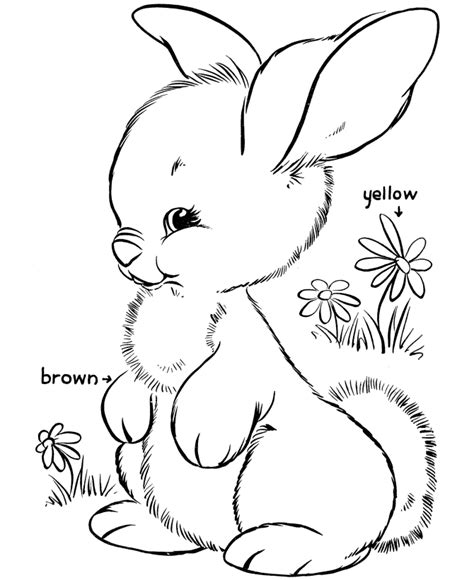Coloring Page Rabbit by Free Printable Easter Bunny Coloring Pages For