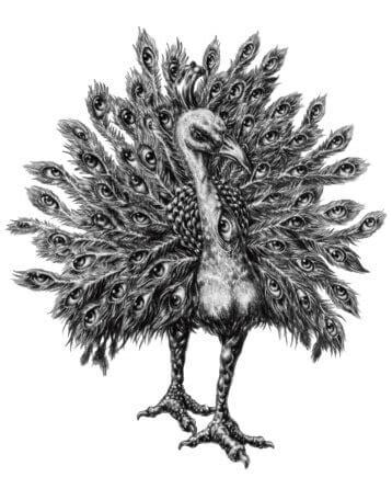 Andrealphus - Andreafos - 72 Espíritos da Goétia - Daemons