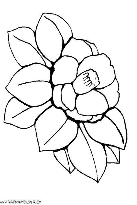 60 Im 225 Genes De Flores Para Colorear Dibujos Colorear | imagenes flores para colorear 60 im 225 genes de flores