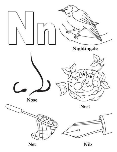 colors that start with n 25 best ideas about letter n on preschool
