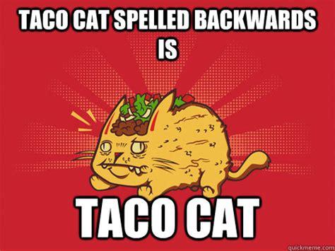 Taco Memes - taco cat memes quickmeme