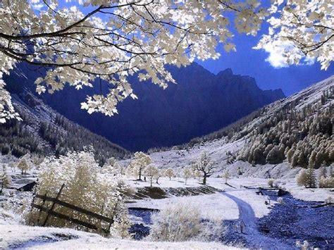 imagenes graciosas de invierno fotos de invierno en las monta 241 as