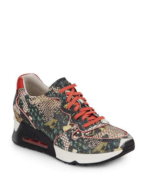 Quinte Tosca Snake Print Blouse ash snake print leather sneakers lyst