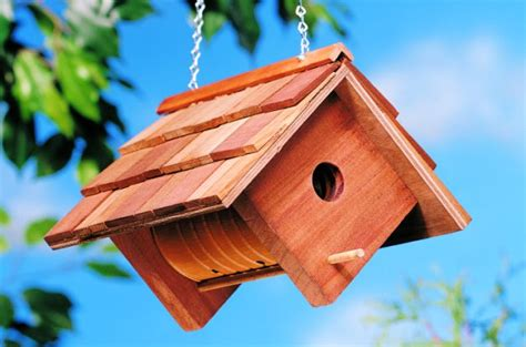 Free Home Plans With Cost To Build by Coffee Can Diy Birdhouse Backyard Projects Birds And