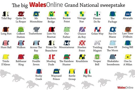 Grand National 2016 Sweepstake - crabbies grand national 2014 your grand national sweepstake kit wales online