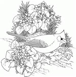 Galerry nature coloring pages adults