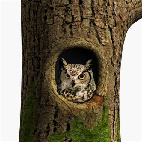 Tree Owl 3 by 3d Owl Tree