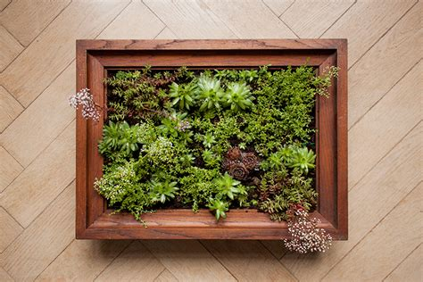 Vertical Garden Frame How To Make A Vertical Garden The Crafty Gentleman