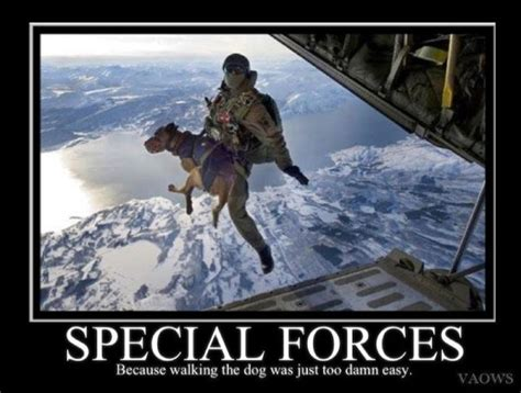 Special Forces Meme - 652 best military funnies images on pinterest lol pics