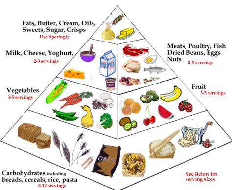 is balance a food how to prepare a balance diet