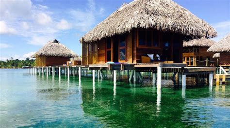overwater bungalow max martine this is your next caribbean overwater bungalow resort