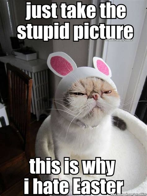 Funny Happy Easter Memes - just take the picture pictures photos and images for