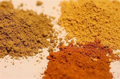 what color is ochre bacteria plus iron equals ochre the prehistoric paint