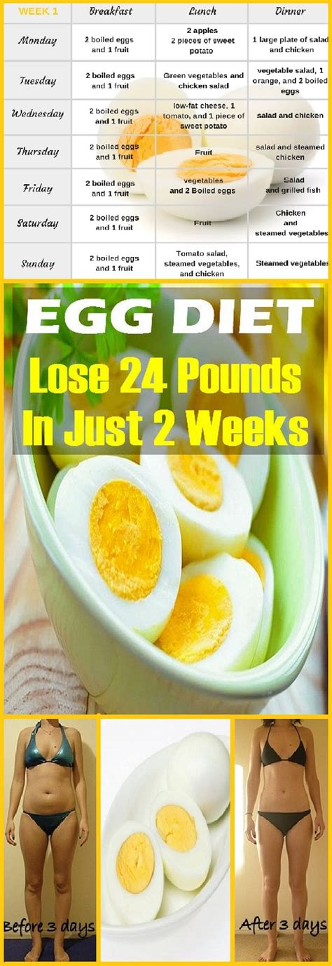 Boiled Egg In A Detox Diet by The Boiled Egg Diet Lose 24 Pounds In Just 2 Weeks Diy