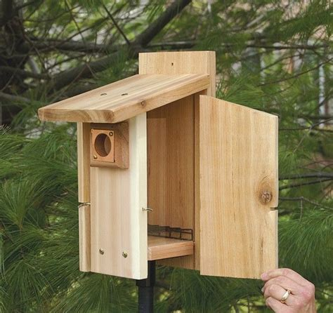 pin by jessica ross on birdhouse ideas pinterest