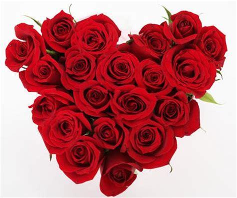 imagenes de rosas virtuales coraz 243 n de rosas una postal virtual para regalar a mam 225
