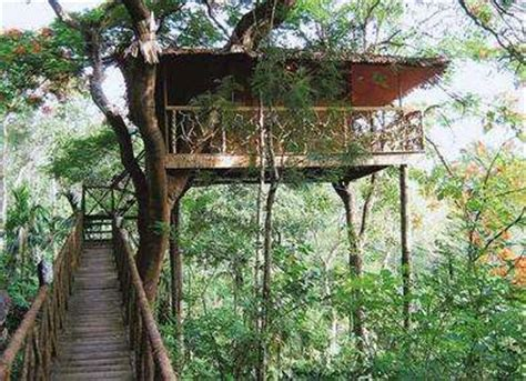 best tree houses 10 best tree houses in india
