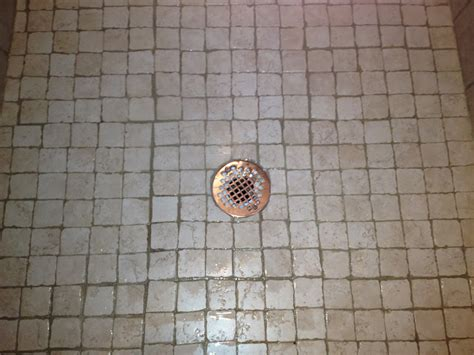 Clogged Shower Drain Clogged Sink Backing Up Shower And Tub Drain