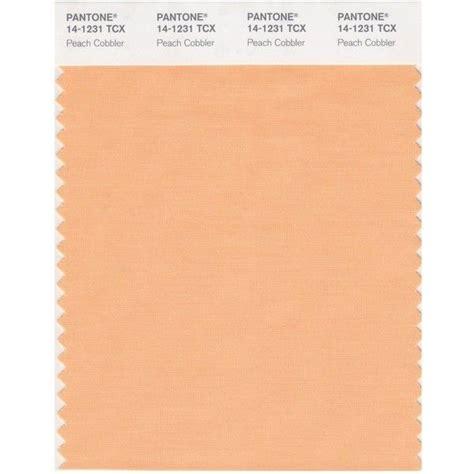pantone pale peach pastels pinterest peaches pantone smart 14 1231x color swatch card peach cobbler