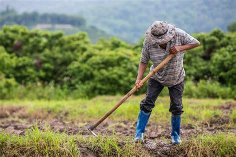 justica inss deve reconhecer tempo de servico rural de