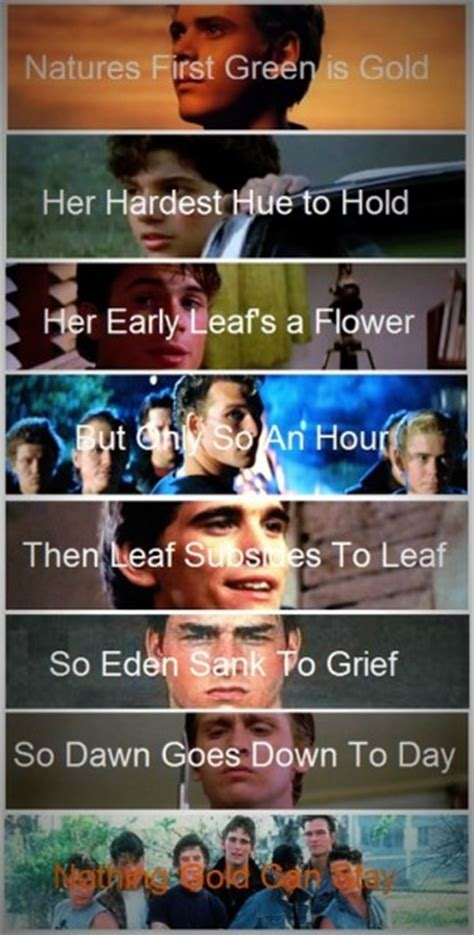 The Outsiders Theme Quotes