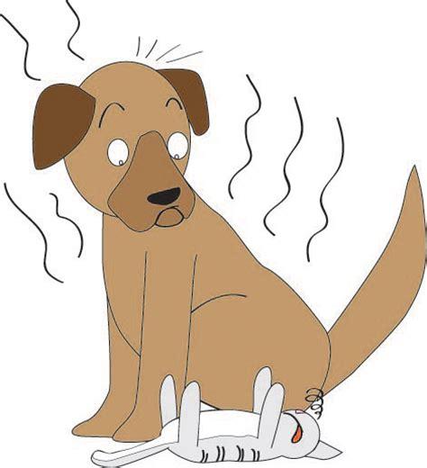 stinky puppy a smelly by land3 on deviantart
