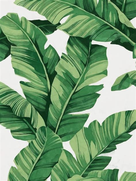 printable leaf art 25 best ideas about tropical art on pinterest tropical