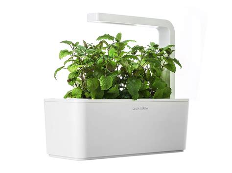 smart herb garden click and grow smart herb garden умный сад от 7 990 купить в kickgoods