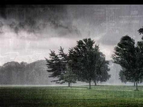 lemon tree testo e traduzione rainy day fool s garden significato della canzone