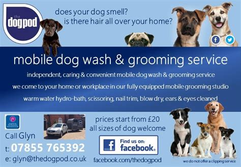 house call dog grooming the dog pod dog grooming company in sutton courtenay abingdon uk