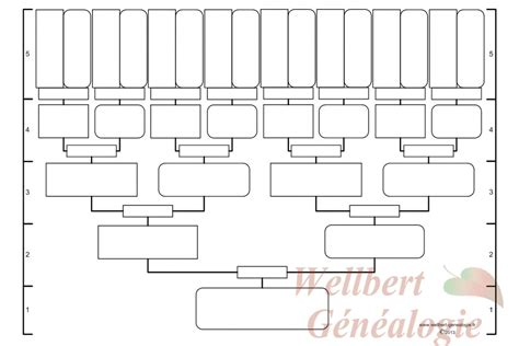 free printable family tree outlines free family tree chart 5 generations printable empty to