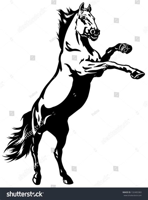 mustang horse silhouette gallery for gt rearing horse logo