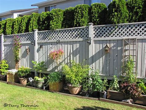 privacy fences for backyards backyard fences wooden