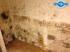 Getting Rid Of Mold In Bathroom by How To Get Rid Of Bathroom Mold Naturally 2 Ways To Kill