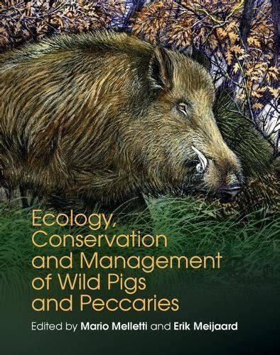 ecology conservation and management of pigs and