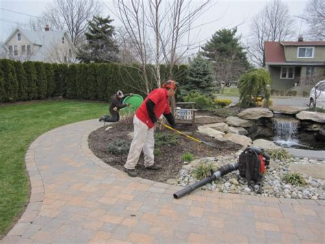 backyard clean up spring fall lawn and yard cleanup services advanced