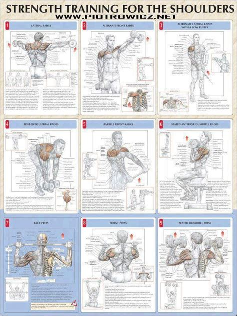 best 25 shoulder workouts for ideas on