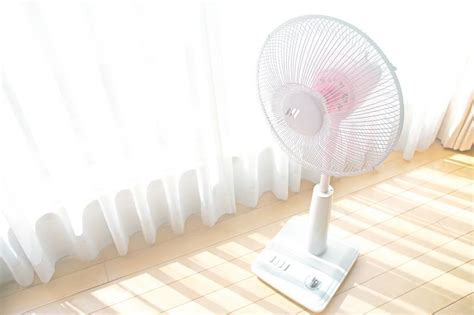 lasko tower fan reviews lasko tower fan review which one is the best what fans