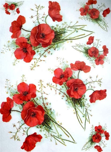 printable paper poppies rice paper for decoupage scrapbooking sheet craft vintage