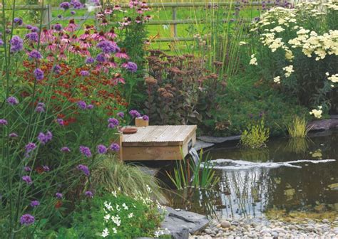 Wildlife Garden Ideas The Ultimate Guide To Water Features In Your Garden