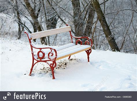 picture  bench  winter park