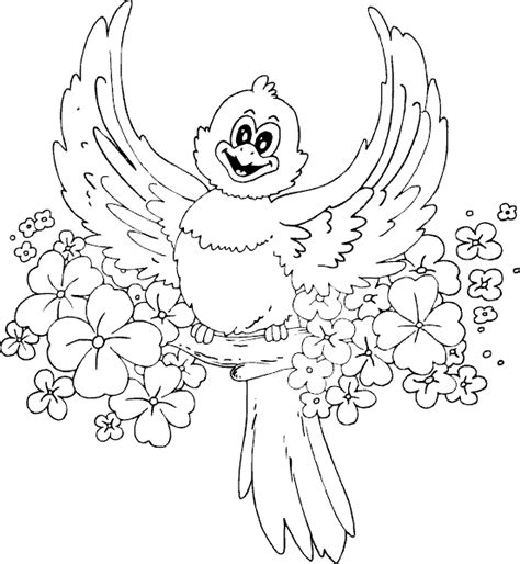 spring bird coloring page coloring com
