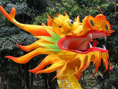 dragon boat festival decorations festival spotlight chinese new year the inside track