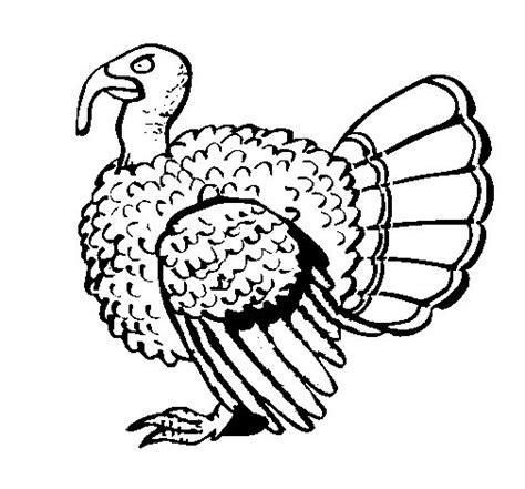 imajenes de dibujo de pavo real para bordar dibujo de pavo real para colorear dibujos net
