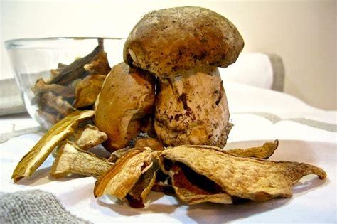 funghi finferli come cucinarli funghi porcini come pulirli e tagliarli dissapore