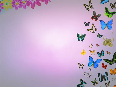 Free Butterflies And Flowers Backgrounds For Powerpoint Hq Free Pastel Flowers Backgrounds For Powerpoint Flower Ppt