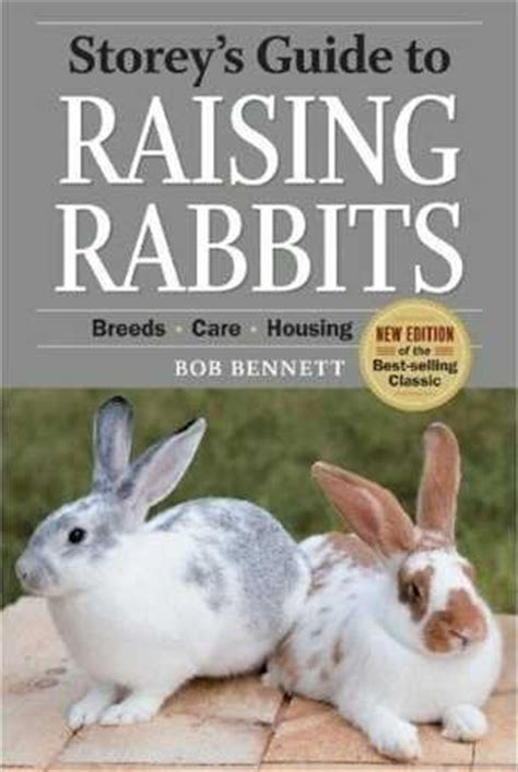 rabbit books rudolph s rabbit ranch bookstore and reference the